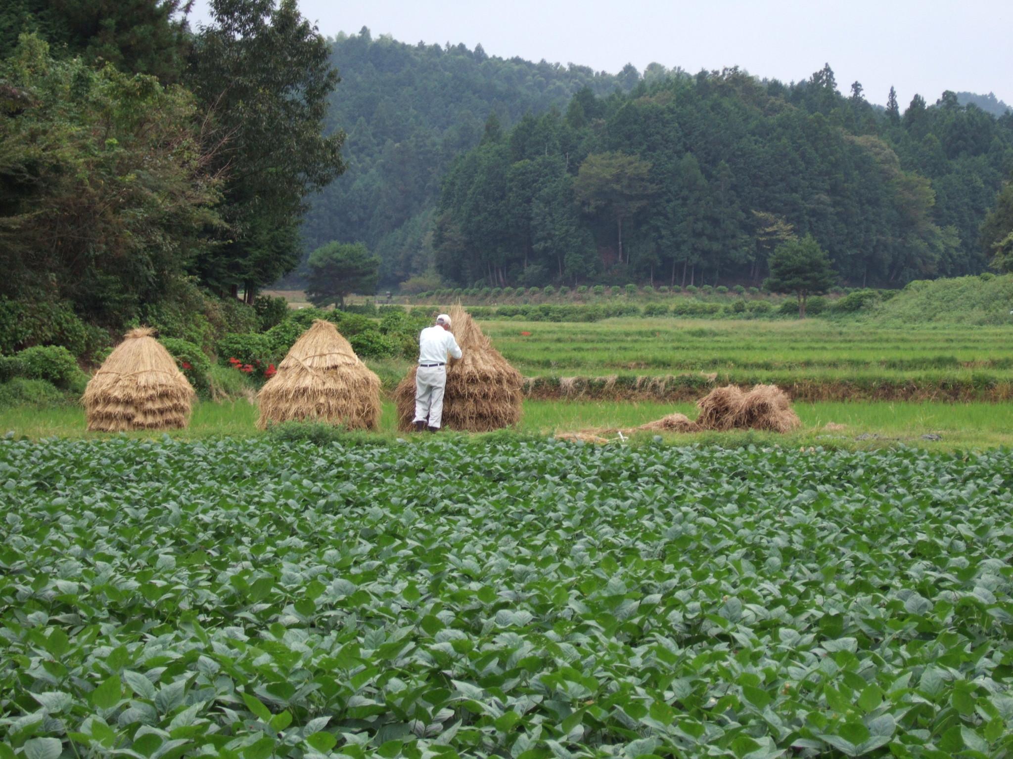 豊かな農村を残していきたい。